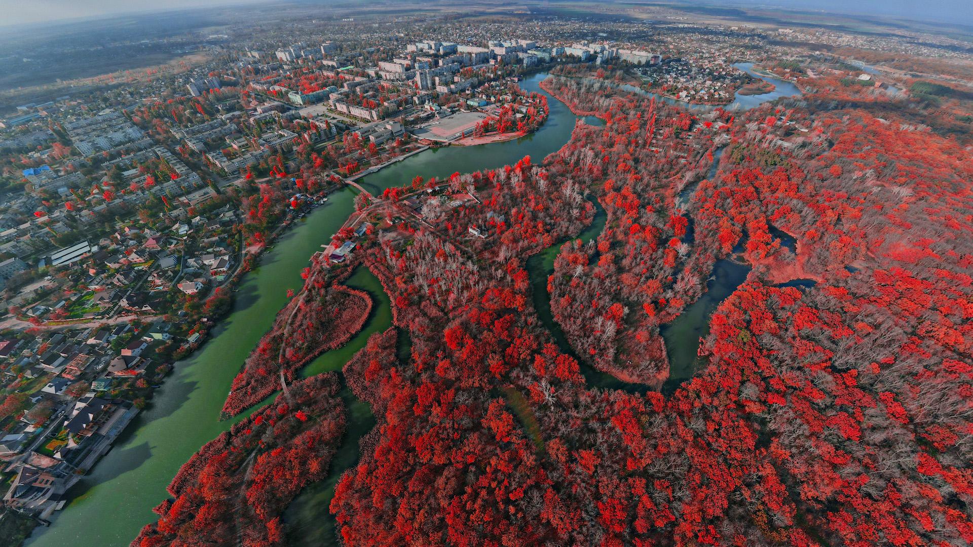 Панорама осеннего леса, ноябрь 2020